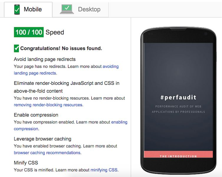 100/100 PageSpeed score PerfAudit Mobile